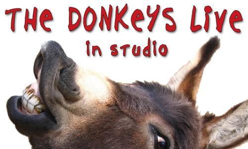 Osły (The Donkeys) – Live in Studio