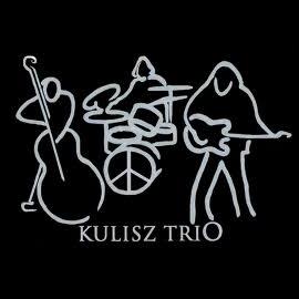 Kulisz Trio w Muzycznej Owczarni