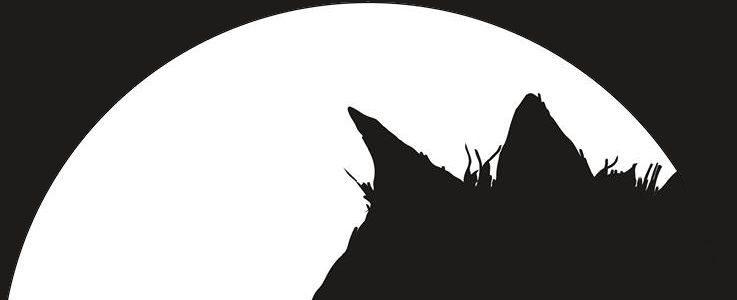 Czarny Pies w maju