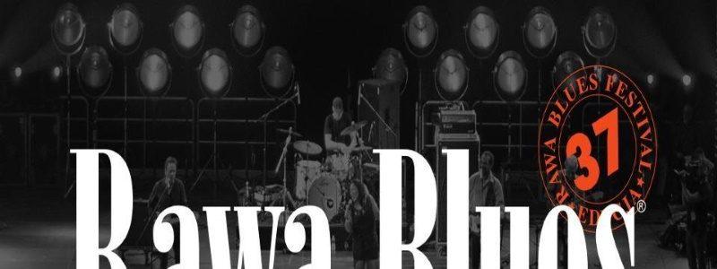 37. Rawa Blues w TV