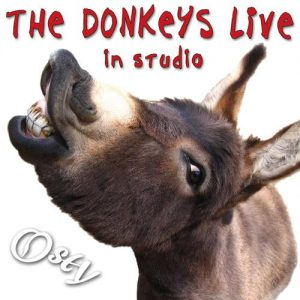 Osły (The Donkeys) – Live in Studio
