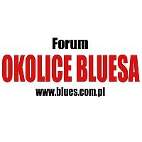 Ankieta Forum Okolice Bluesa 2013 – wyniki