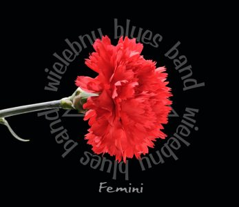 Wielebny Blues Band – Femini