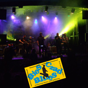 Bies Czad Blues 2016 – foto 13